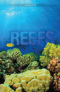 Cover for Reefs