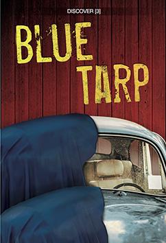 Cover for Blue Tarp