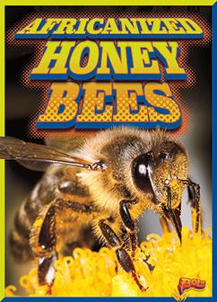 Cover for Africanized Honeybees