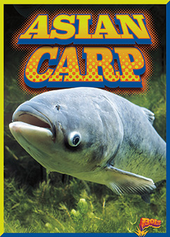 Cover for Asian Carp