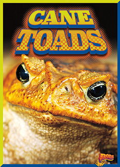 Cover for Cane Toads