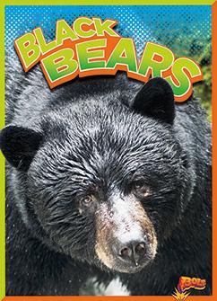 Cover for Black Bears