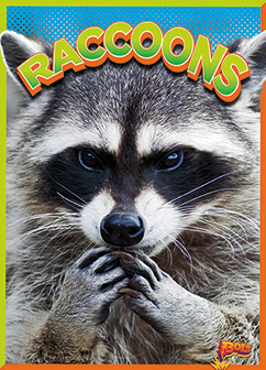 Cover for Raccoons