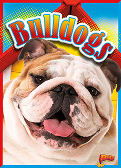 Cover for Bulldogs