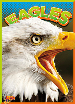 Cover for Eagles