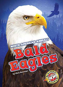 Cover for Bald Eagles
