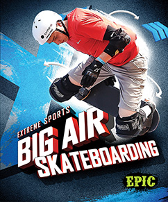 Cover for Big Air Skateboard