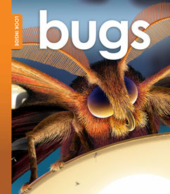 Cover for Look Inside Bugs