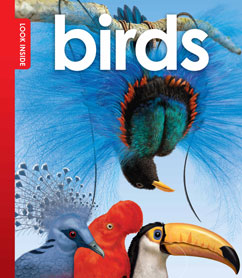 Cover for Look Inside Birds