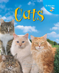 Cover for E-Mouse Cats