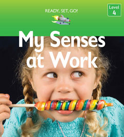 Cover for My Senses at Work