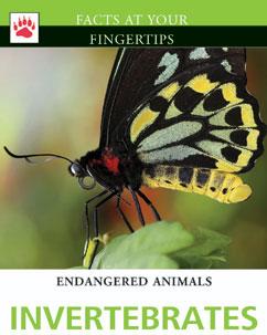 Cover for Invertebrates