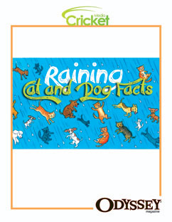 Cover for Raining Cats and Dog Facts