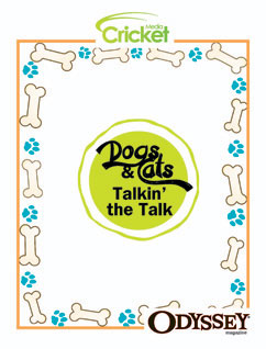 Cover for Dogs and Cats Talkin' the Talk