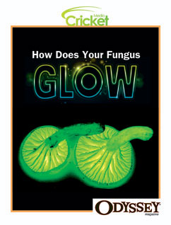 Cover for How Does Your Fungus Glow