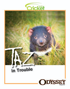 Cover for Taz In Trouble