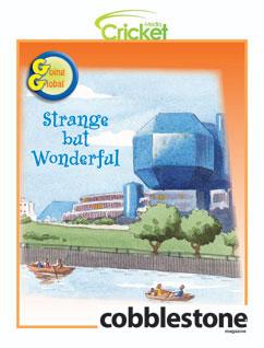 Cover for Strange but Wonderful