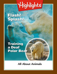 Cover for Flash! Splash! Training a Deaf Polar Bear