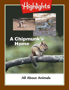 Cover for A Chipmunk's Home
